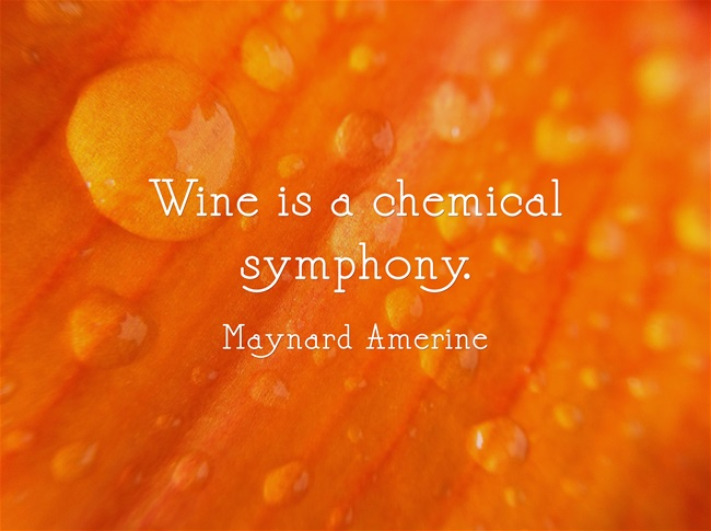 Wine-is-a-chemical